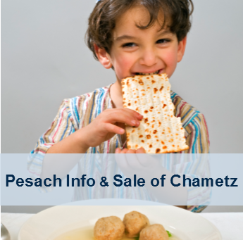 KLBD Kosher Pesach Pages